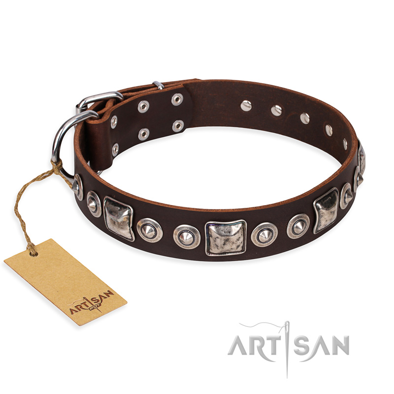 """Pierian spring"" FDT Artisan Brown Leather Riesenschnauzer Collar with Silvery Decorations"