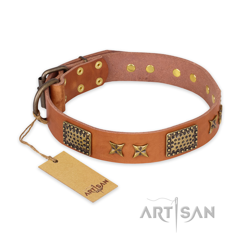 """Cosmic Traveller"" FDT Artisan Adorned Leather Riesenschnauzer Collar with Old Bronze-Plated Stars and Plates"