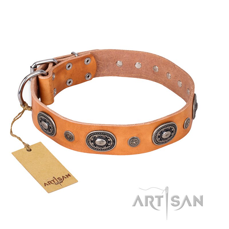 """Twinkle Twinkle"" FDT Artisan Incredible Studded Tan Leather Riesenschnauzer Collar"