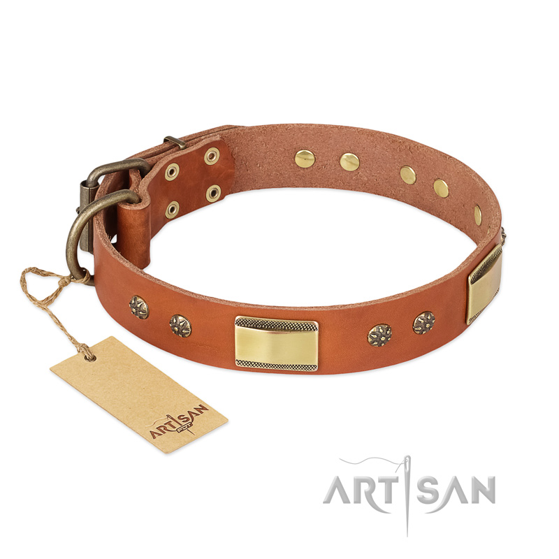 """Enchanting Spectacle"" FDT Artisan Tan Leather Riesenschnauzer Collar with Old Bronze Look Plates and Round Studs"