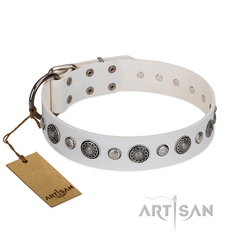 """Fluff-Stuff Beauty"" FDT Artisan White Leather Riesenschnauzer Collar with Silver-like Studs and Conchos"