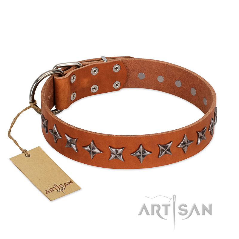 """Star Trek"" FDT Artisan Tan Leather Riesenschnauzer Collar Decorated with Stars"