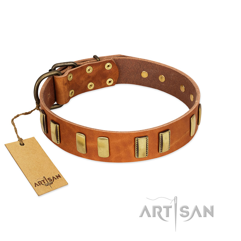 """Olive Slice"" FDT Artisan Tan Leather Riesenschnauzer Collar with Engraved and Smooth Plates"