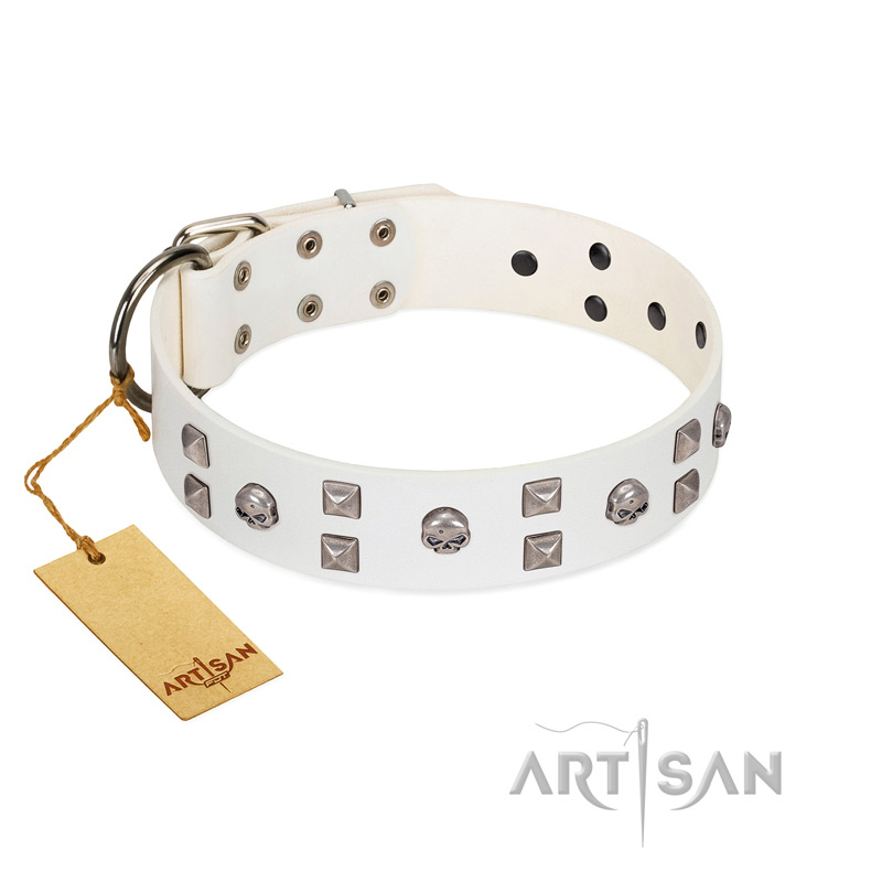 """Rock the Sky"" Durable FDT Artisan White Leather Riesenschnauzer Collar with Chrome-plated Decorations"