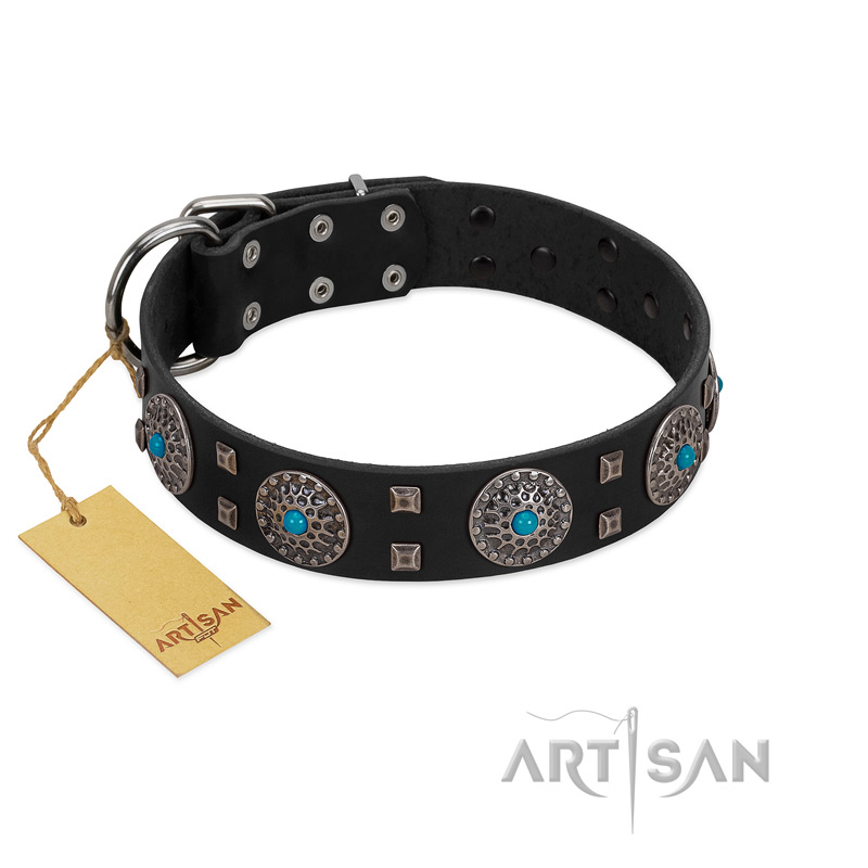 """Boundless Blue"" FDT Artisan Black Leather Riesenschnauzer Collar with Chrome Plated Brooches and Square Studs"