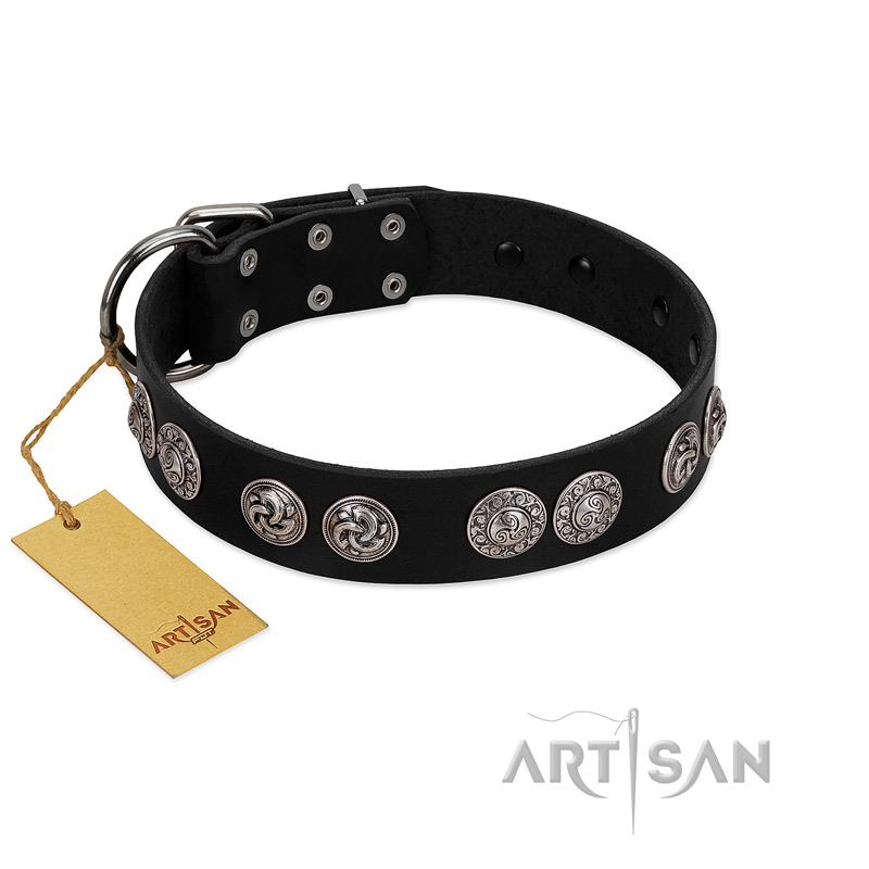 """Magic Amulete"" Handcrafted FDT Artisan Black Leather Riesenschnauzer Collar with Chrome-Plated Shields"
