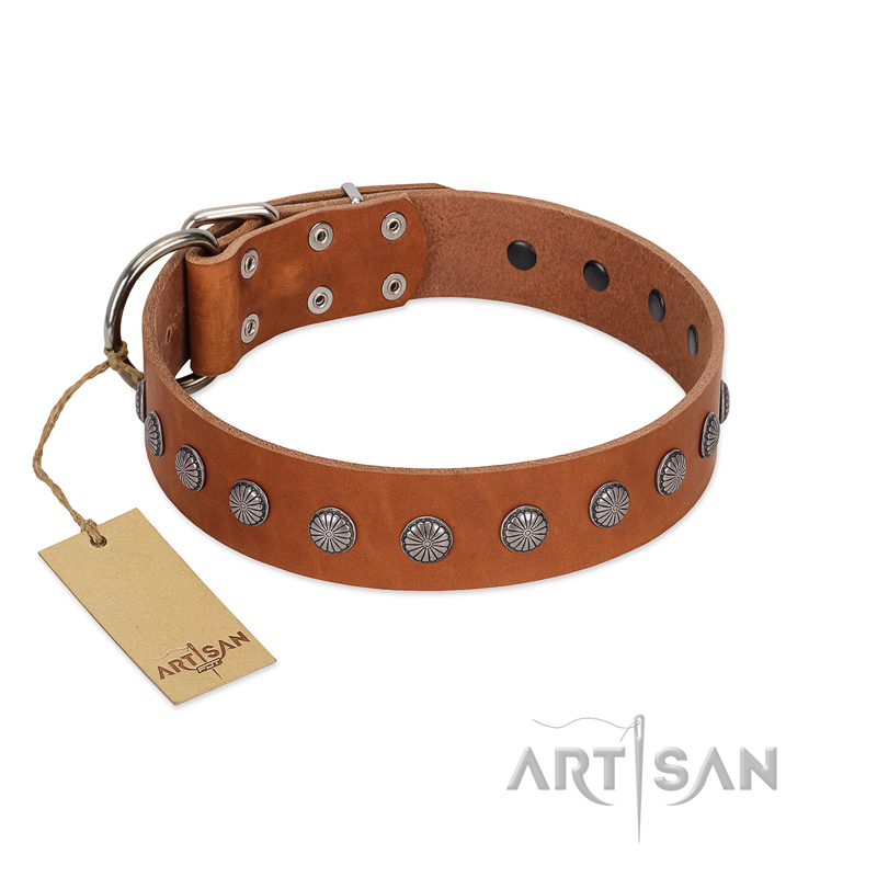 """Little Floret"" Fashionable FDT Artisan Tan Leather Riesenschnauzer Collar with Silver-Like Adornments"