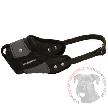 Riesenschnauzer Muzzle Leather and Nylon for Walking and Training