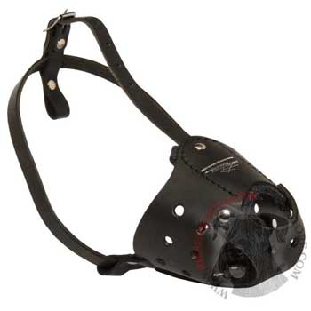 Walking Leather Muzzle for Riesenschnauzer