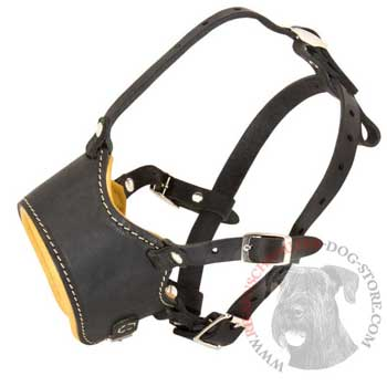 Leather Riesenschnauzer Muzzle for No Bark Training Walking