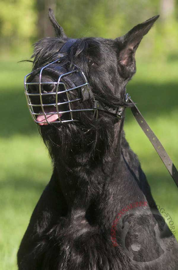 Riesenschnauzer Wire Cage Muzzle Allows Barking and Panting