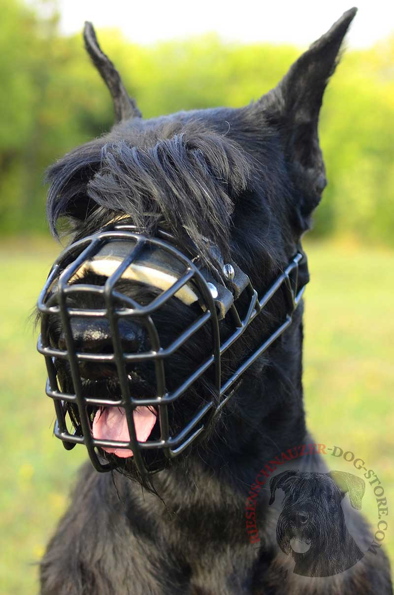 Frost-Resistant Wire Cage Riesenschnauzer Muzzle with One Adjustable ...