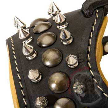 Riesenschnauzer Muzzle Leather Black with Spikes and Studs