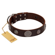 """Flashy Woof"" FDT Artisan Brown Leather Riesenschnauzer Collar with Chrome Plated Brooches"