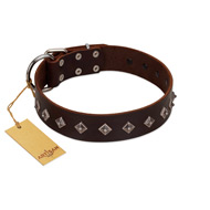 """Boundless Energy"" Premium Quality FDT Artisan Brown Designer Leather Riesenschnauzer Collar with Small Pyramids"