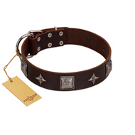 """Cold Star"" Designer FDT Artisan Brown Leather Riesenschnauzer Collar with Silver-Like Adornments"