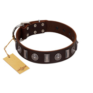 """Spiky Way"" FDT Artisan Brown Leather Riesenschnauzer Collar with Silver-Like Decorations"