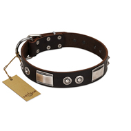 """Baller Status"" FDT Artisan Brown Leather Riesenschnauzer Collar Adorned with a Set of Chrome Plated Studs and Plates"
