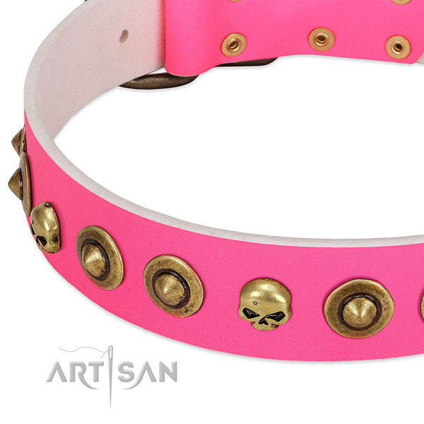 Significant adornments on natural leather collar for your dog