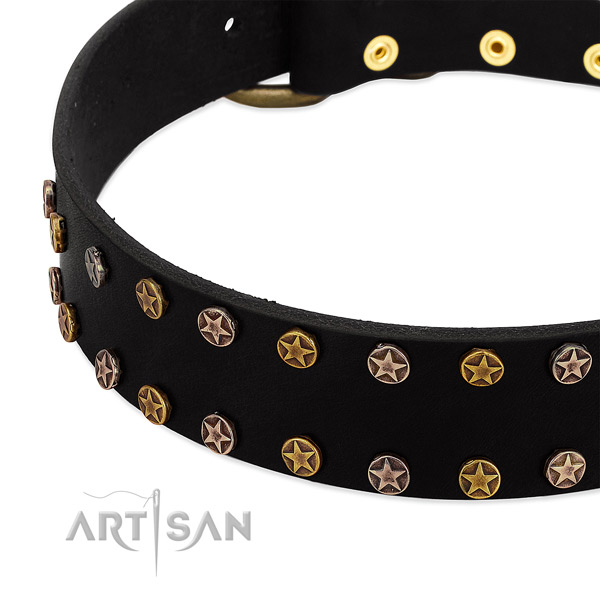 Remarkable decorations on leather collar for your doggie