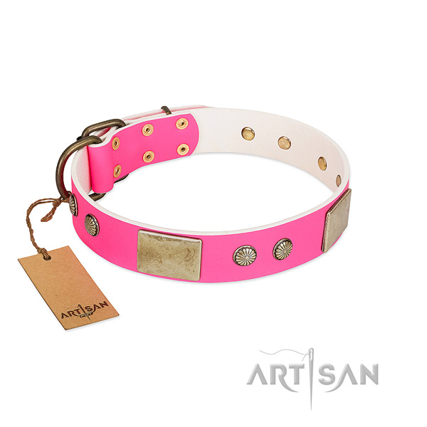 Easy to adjust full grain leather dog collar for basic training your pet