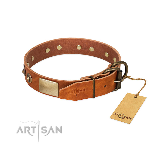 Rust-proof hardware on everyday use dog collar