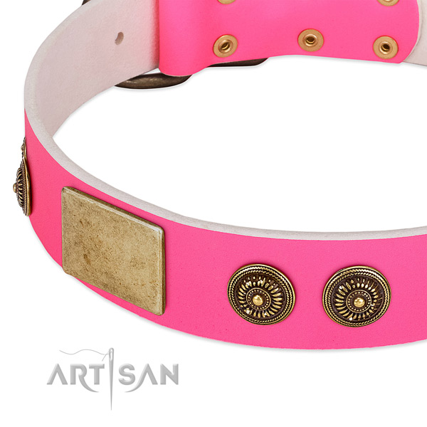 Top quality dog collar handcrafted for your impressive four-legged friend