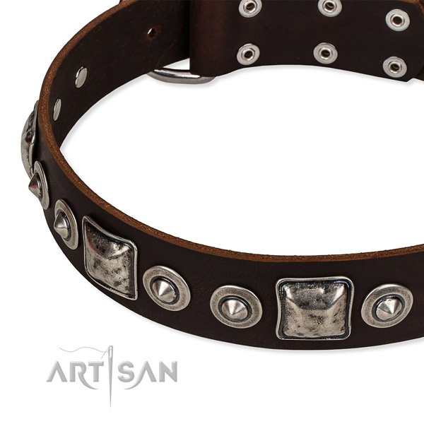 Full grain leather dog collar made of flexible material with adornments