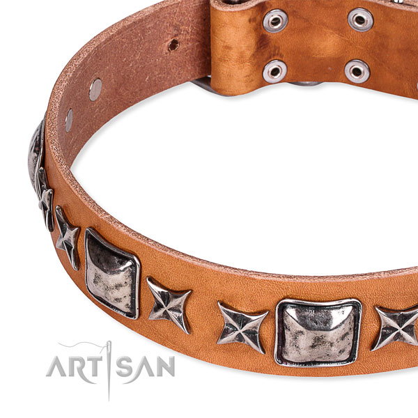 Everyday use embellished dog collar of durable full grain natural leather