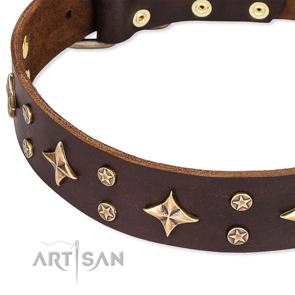Comfortable wearing decorated dog collar of finest quality full grain genuine leather