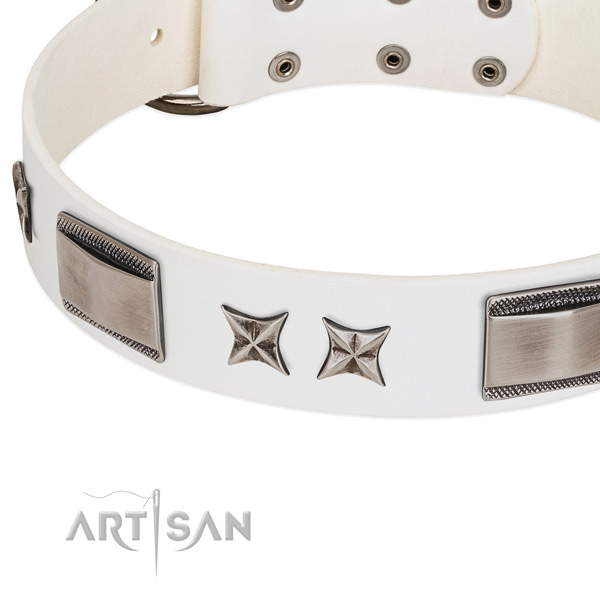 High quality leather dog collar with strong buckle