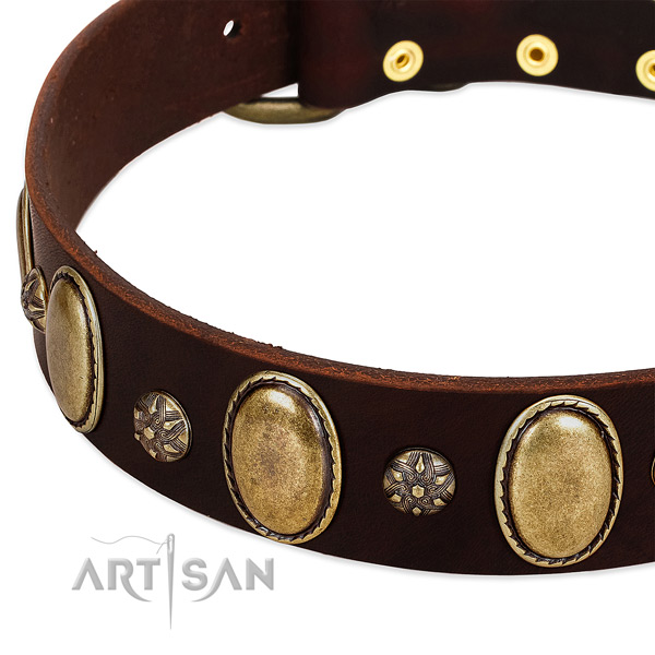 Daily walking soft full grain leather dog collar