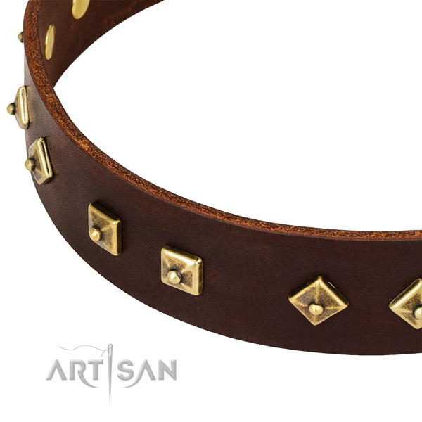Best quality full grain natural leather collar for your impressive canine