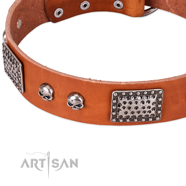 Rust resistant adornments on full grain leather dog collar for your four-legged friend