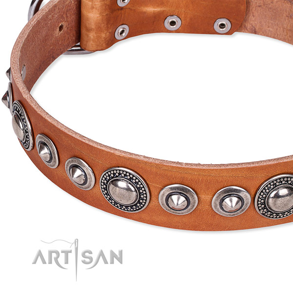 Daily walking decorated dog collar of durable full grain leather