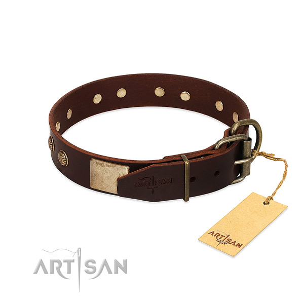 Durable buckle on everyday use dog collar