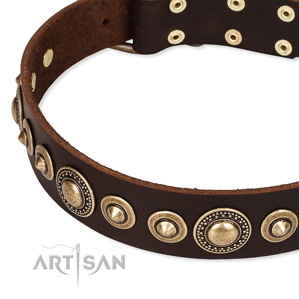 High quality full grain genuine leather dog collar handcrafted for your impressive dog
