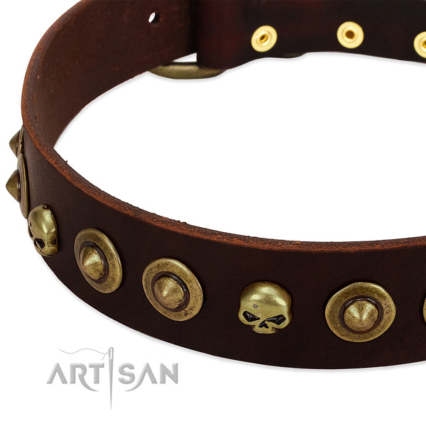 Exquisite embellishments on genuine leather collar for your canine