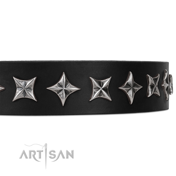 Everyday walking studded dog collar of strong natural leather