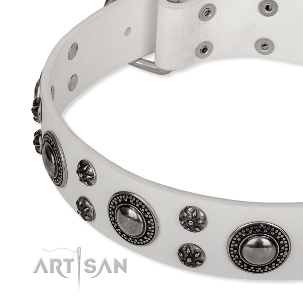 Stylish walking embellished dog collar of top notch full grain leather