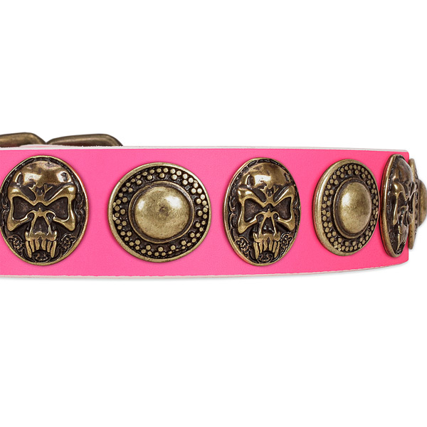 Corrosion proof hardware on genuine leather dog collar for your pet