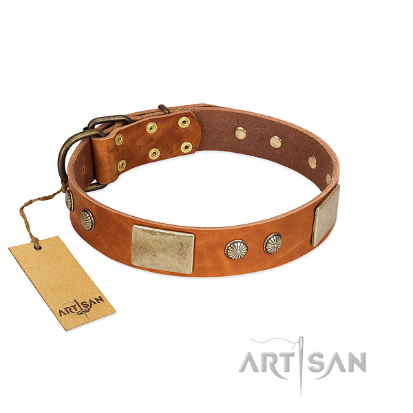 Easy wearing full grain genuine leather dog collar for walking your doggie