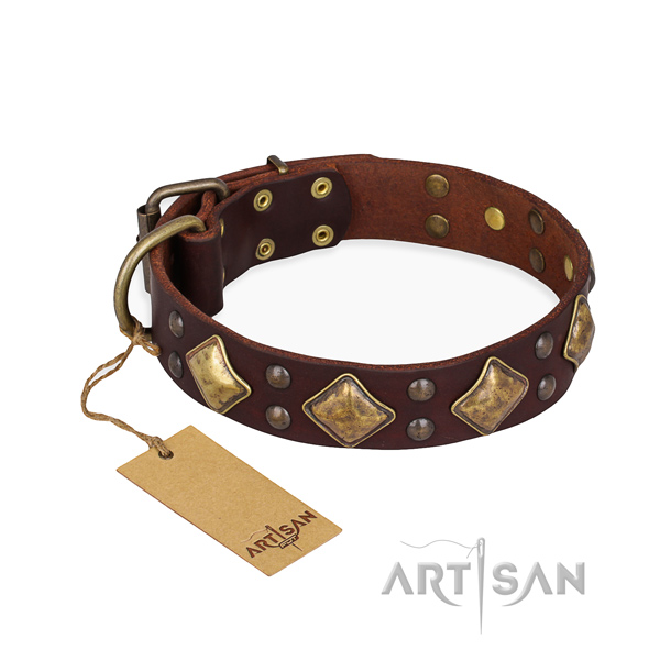 Daily walking stylish dog collar with corrosion proof hardware