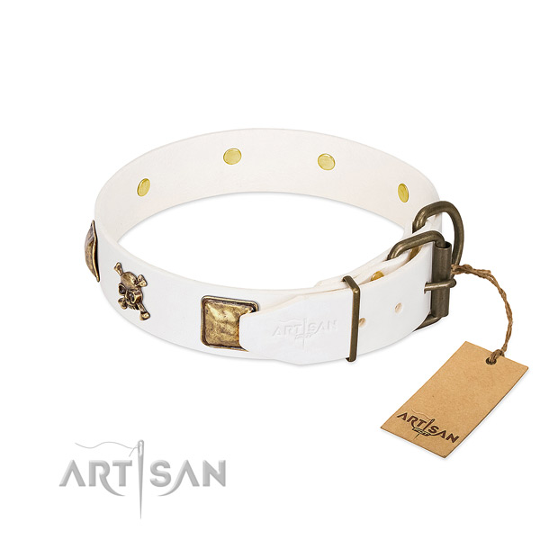 Daily walking genuine leather dog collar with stylish design embellishments