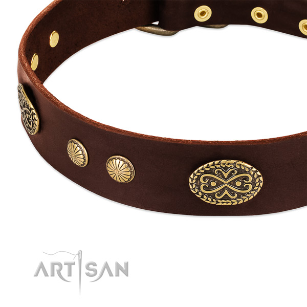 Rust resistant decorations on full grain leather dog collar for your canine