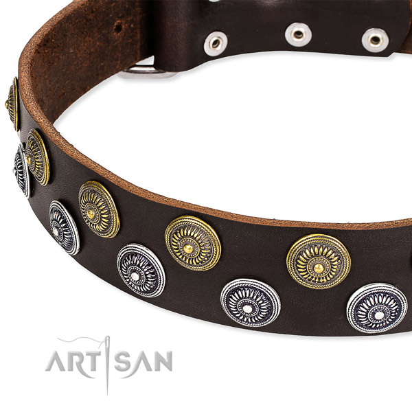 Comfy wearing decorated dog collar of quality full grain natural leather