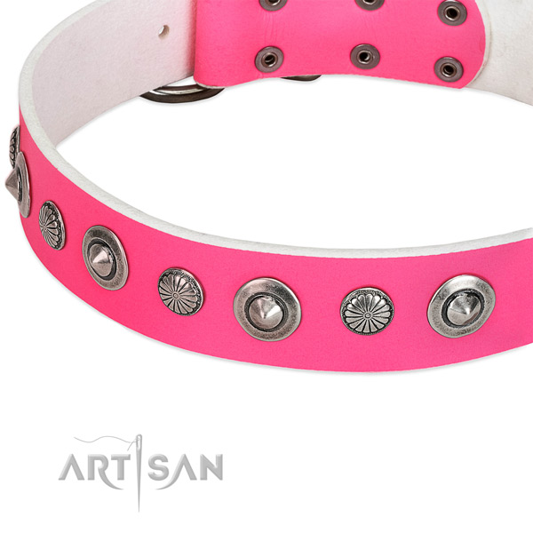 Genuine leather collar with reliable buckle for your beautiful four-legged friend