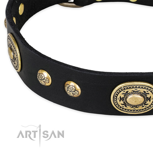 Impressive genuine leather collar for your impressive canine