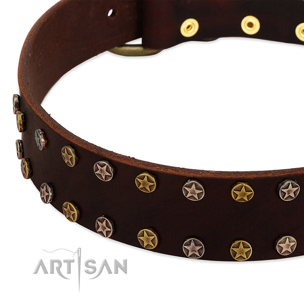 Everyday use full grain natural leather dog collar with trendy embellishments