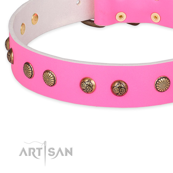Leather collar with durable D-ring for your stylish four-legged friend
